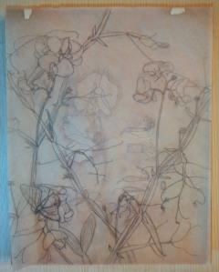 Tracing paper sketch © 2014 Karen A Johnson