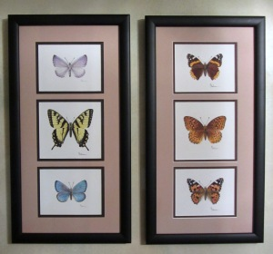 Canadian Butterflies 1 and 2-watercolor © 2006 Karen A. Johnson